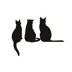 3-katten